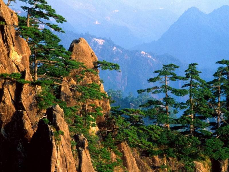 景点大全 自然保护区            张家界风景区位于武陵源风景名胜区