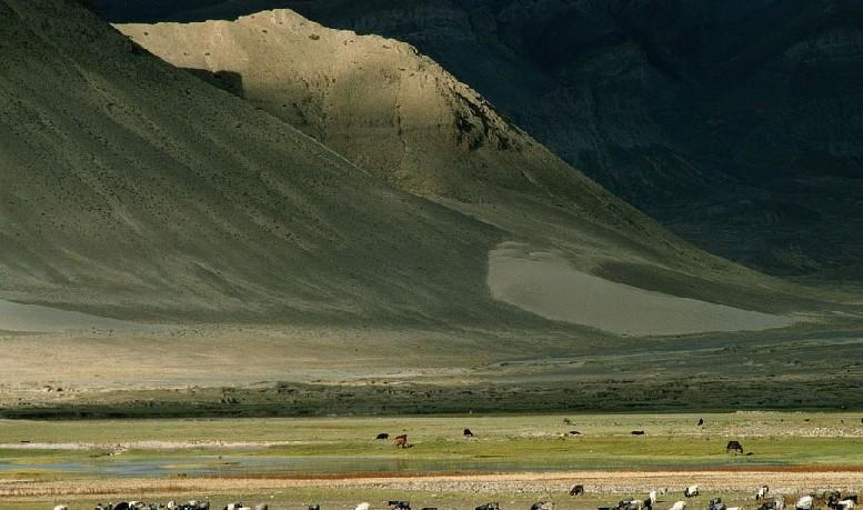 东戈壁省 东戈壁省始建于1931年,位于蒙古南部,是蒙古国的二十一个省之一。面积11.5万平方公里,南面与中国接壤,国界线有580公里。西面与南戈北面与肯特省和中央省、北面与肯特省和中央省、东面与苏赫巴特尔省分别连接。距乌兰巴托市463公里,下辖15个县。 简介   东戈壁省设立于1931年。此前东戈壁省称图什业图汗省戈壁莫日更王旗。东戈壁省总面积为11.