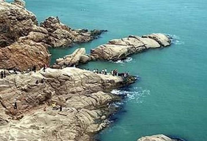 风格最独特的海陆动物自然保护区--神雕山野生动物园