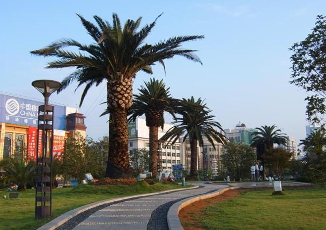 八一南昌起义纪念塔图片