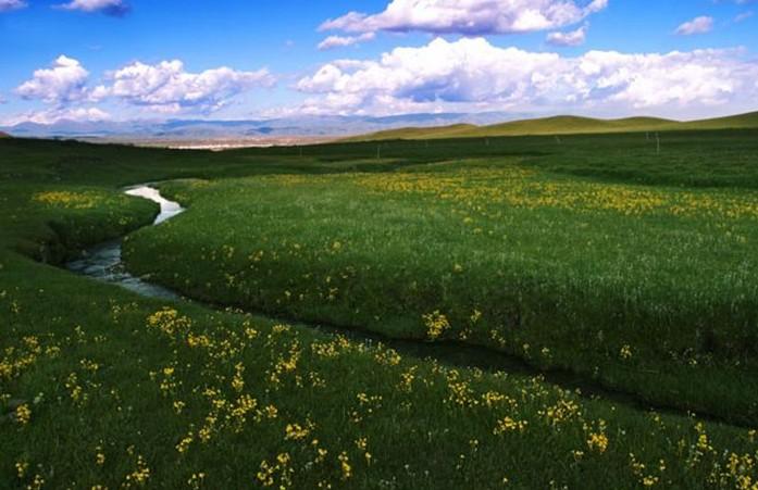 景点大全 草原草甸        金银滩草原,位于青海省海晏县境内.