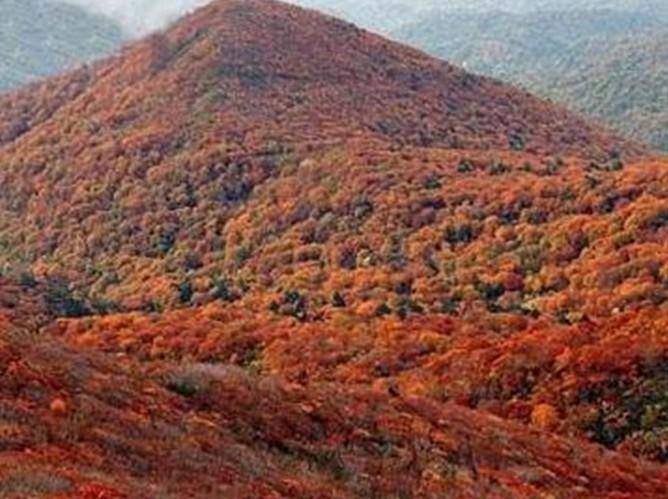 莲花山森林公园景区位于北京市