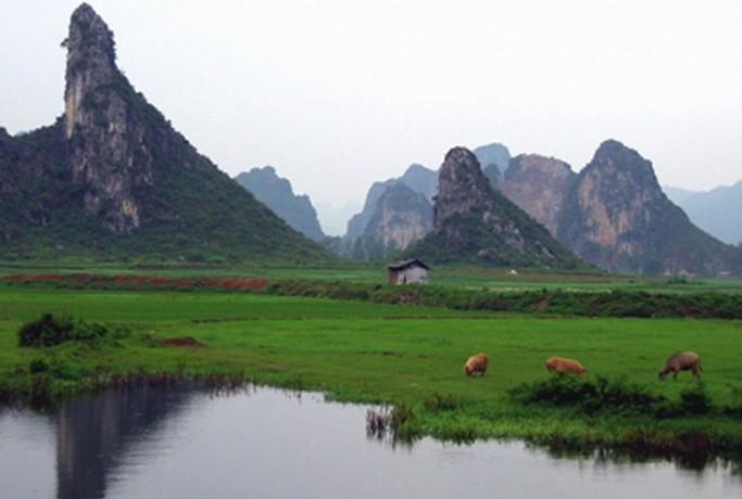 首页 景区大全 广东省 清远市    南山风景区位于英德市南郊,是英德的
