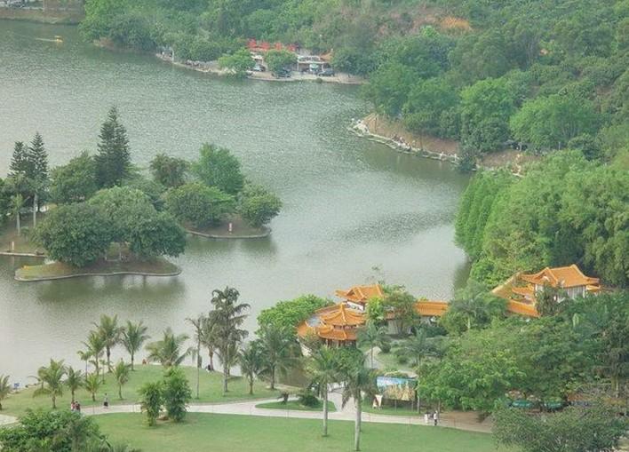 仙湖植物园 - 山东聊城聊之旅国际旅行社有限公司