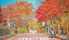韩国·首尔济州岛四飞五日游