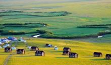乌拉盖+玉龙沙湖+蒙古汗城+北五台五日游
