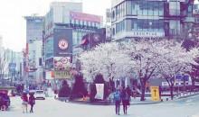韩国首尔济州四飞五日游(山航早班)