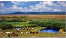 乌拉盖+科尔沁双草原+阿尔山+白狼+九曲湾+霍林河+白城六晚七天