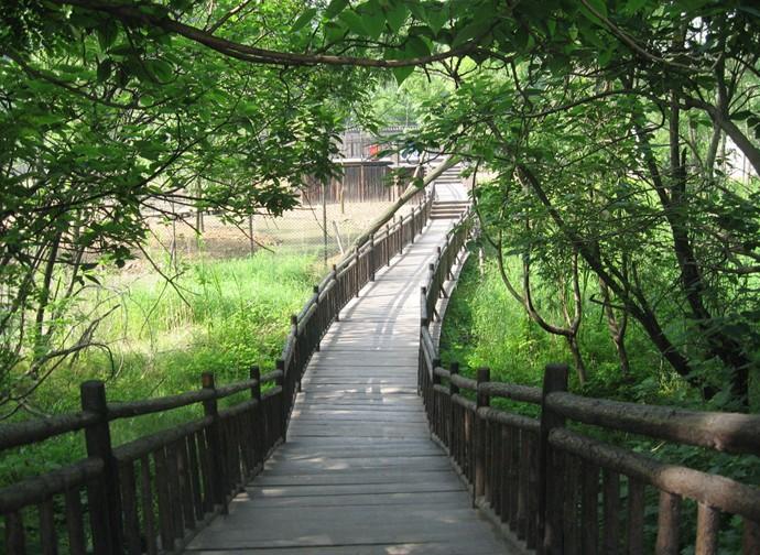 """茱萸湾风景区 国家AAA级旅游区,扬州市茱萸湾风景区(扬州动物园)位于扬州市中心东北5公里,面积约50公顷,东临古运河,西傍大运河,北通邵伯湖,南望江都水利枢纽工程。 茱萸湾风景区是一座融自然风光、人文景观、花卉、植物、动物散养及表演和现代游乐为一体的半岛生态型动植物园。唐代著名诗人刘长卿《送子婿崔真甫李穆往扬州》一首诗句""""山中动泉脉,渡口发梅花。芜城春草生,君作扬州客。半逻莺满树,新年人独还。落花逐流水,共到茱萸湾。""""就是写了这一带迷人的风光。 如虹卧波""""荷风曲桥&"""