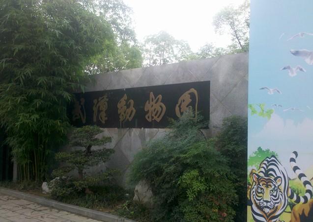武汉动物园 - 山东聊城聊之旅国际旅行社有限公司