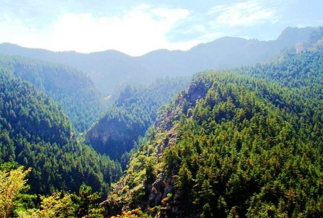 苏峪口国家森林公园 - 山东聊城聊之旅国际旅行社有限
