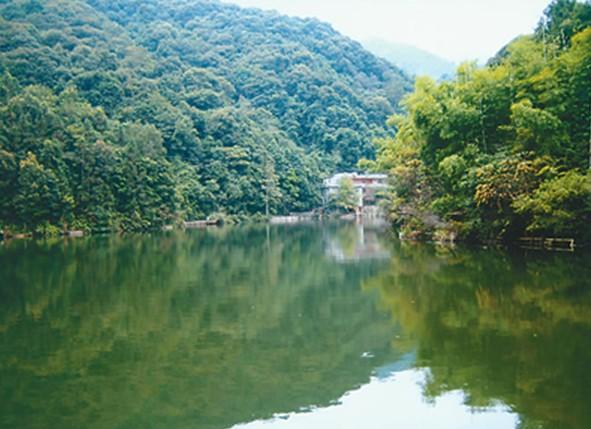 """桂山风景区树木终年常绿,四季花开果熟,素有""""植物王国,动物乐园,旅游"""